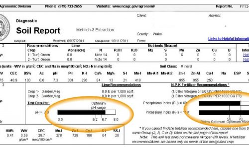 sample soil test report