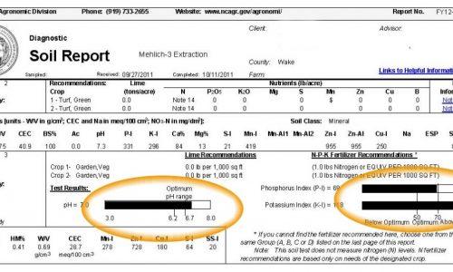sample soil test report